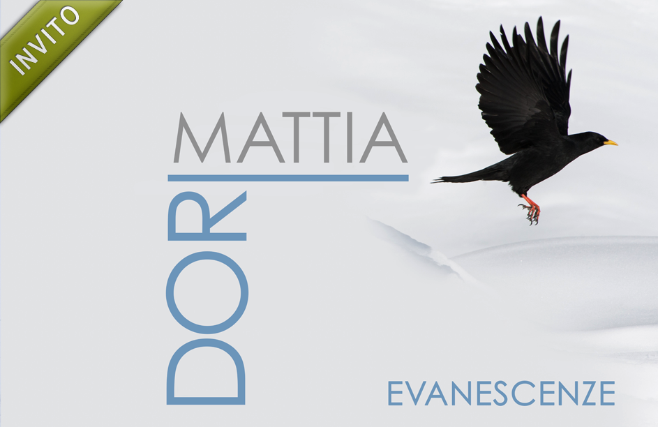 EVANESCENZE | imamgini di Mattia Dori